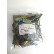 Hoja de Guanábana (Seleccionada) refill, 25 gr