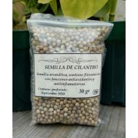Semilla de Cilantro refill, 35 gr