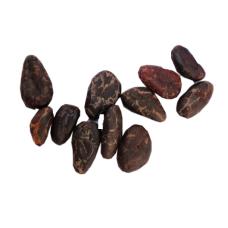 Nibs / Granos de Cacao Orgánicos Horneados, 100 grs